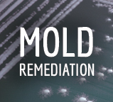 Richmond, VA Mold Remediation.
