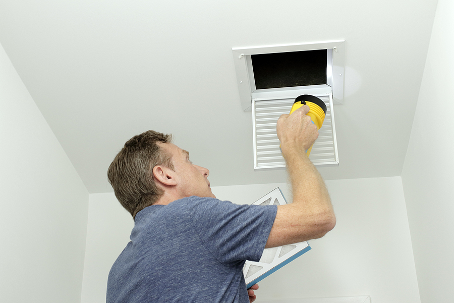 What's Hiding In My Air Ducts?